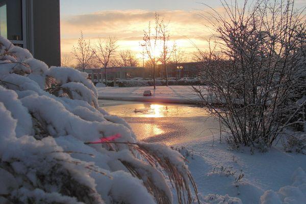 Zugefrorener Wassergraben in Morgensonne