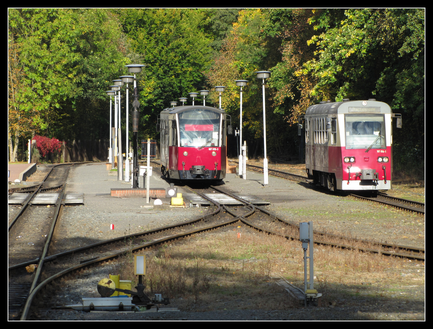 Zugkreuzung in Alexisbad