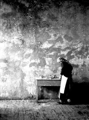 Zugravita  (The Painter)