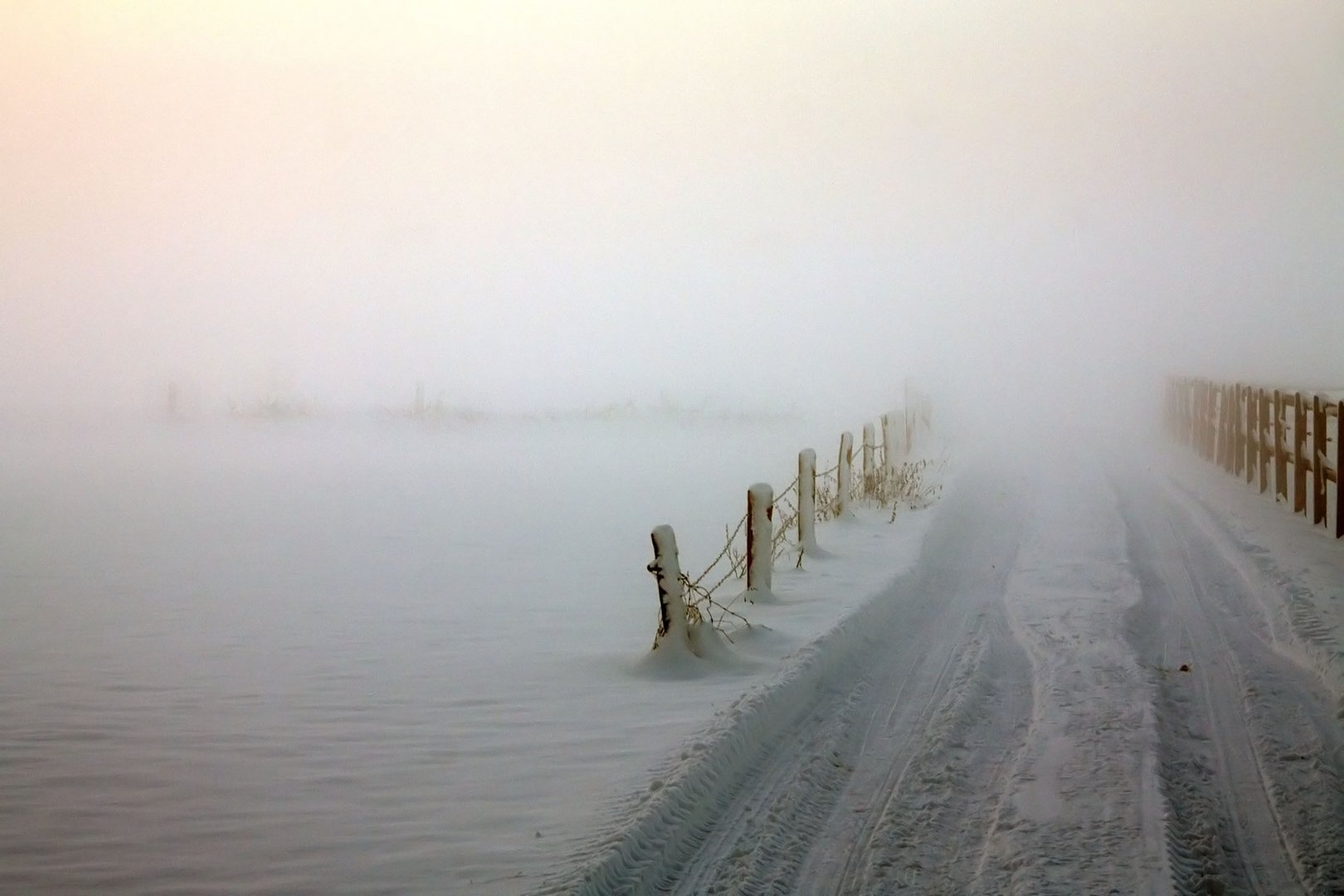 Zukunft im Nebel