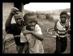 Zulu Fight