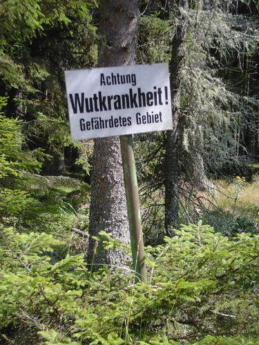 Zum Ärgern - ab in den Wald!