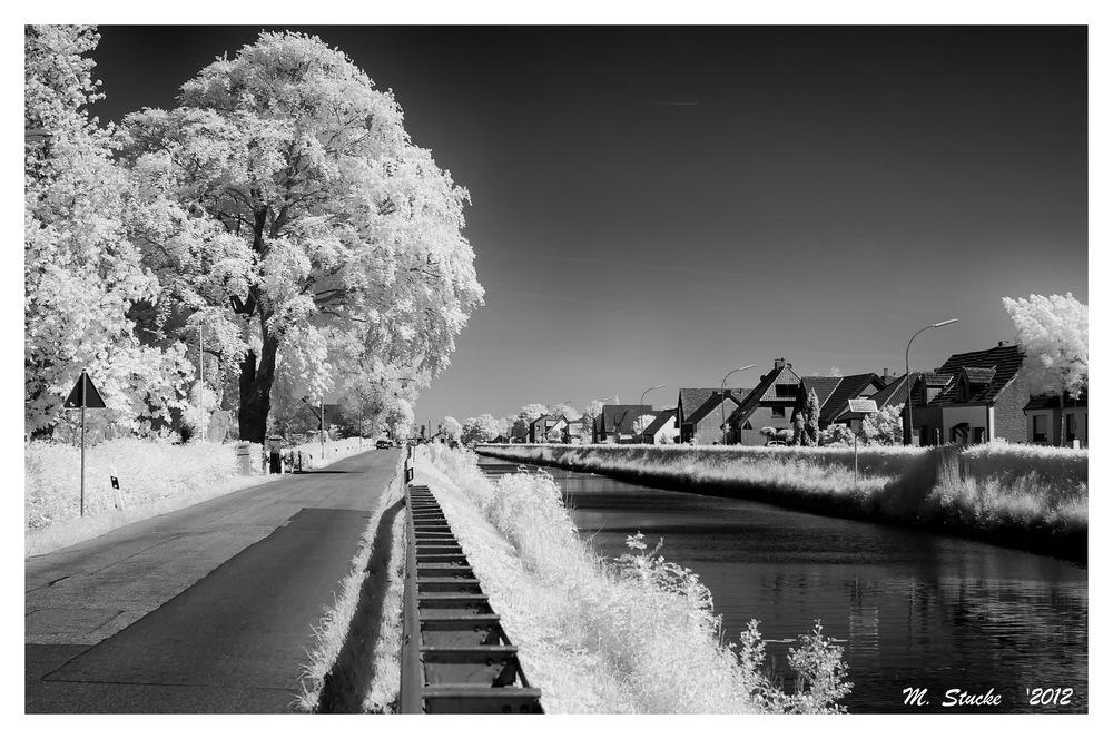 Zum alten Rhein -2-