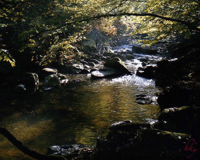 Zum Donautal