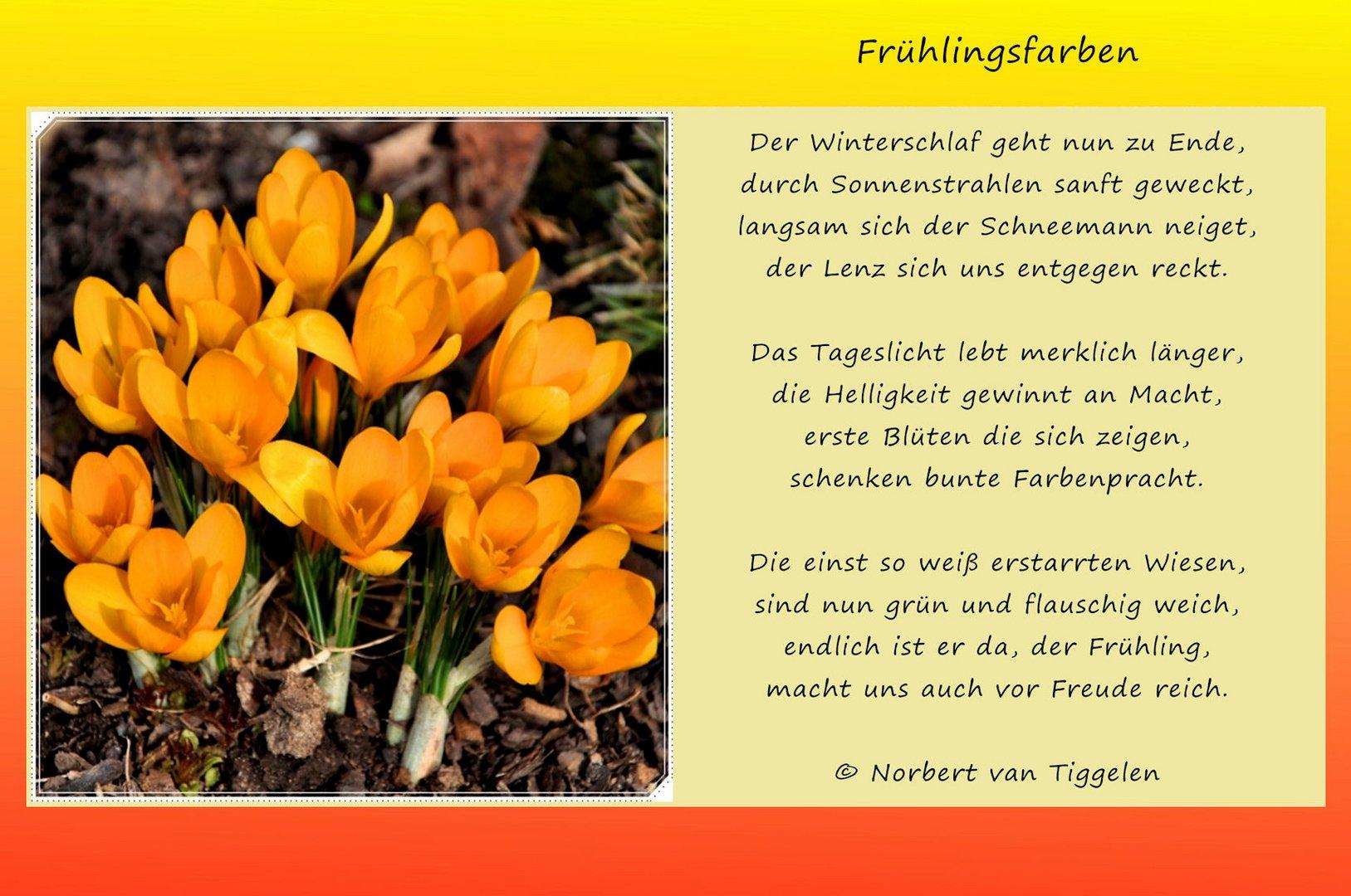 zum Frühlingsanfang.