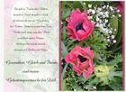 zum Geburtstag... 6.5.2014