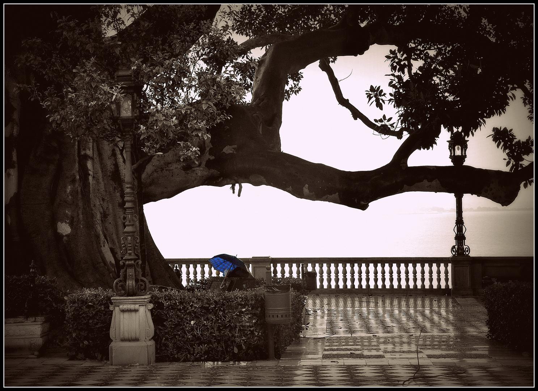 """Zum Gedenktag """"Öffne-drinnen-einen-Regenschirm-Tag"""" am 13.3."""