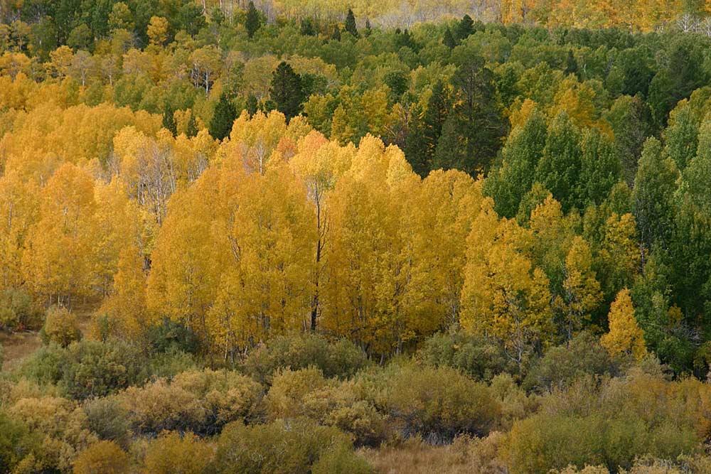 Zum Herbstanfang