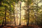 Zum Herbstbeginn