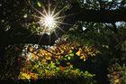 Zum heutigen Herbstbeginn