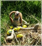 ZUM THEMA : Rund um Ostern