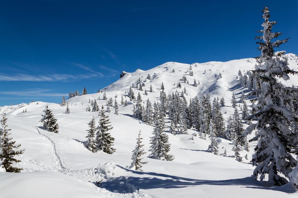 zum Thema Schnee ;-))