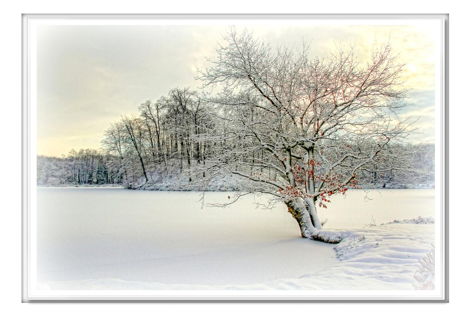 """Zum Thema """" Winterzauber """""""