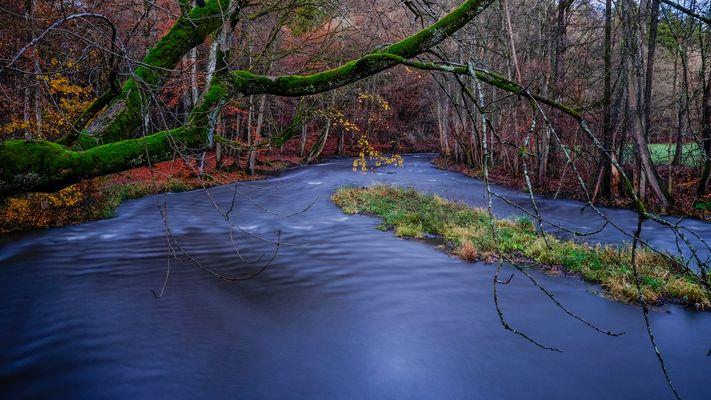 Zur blauen Stunde am Fluss