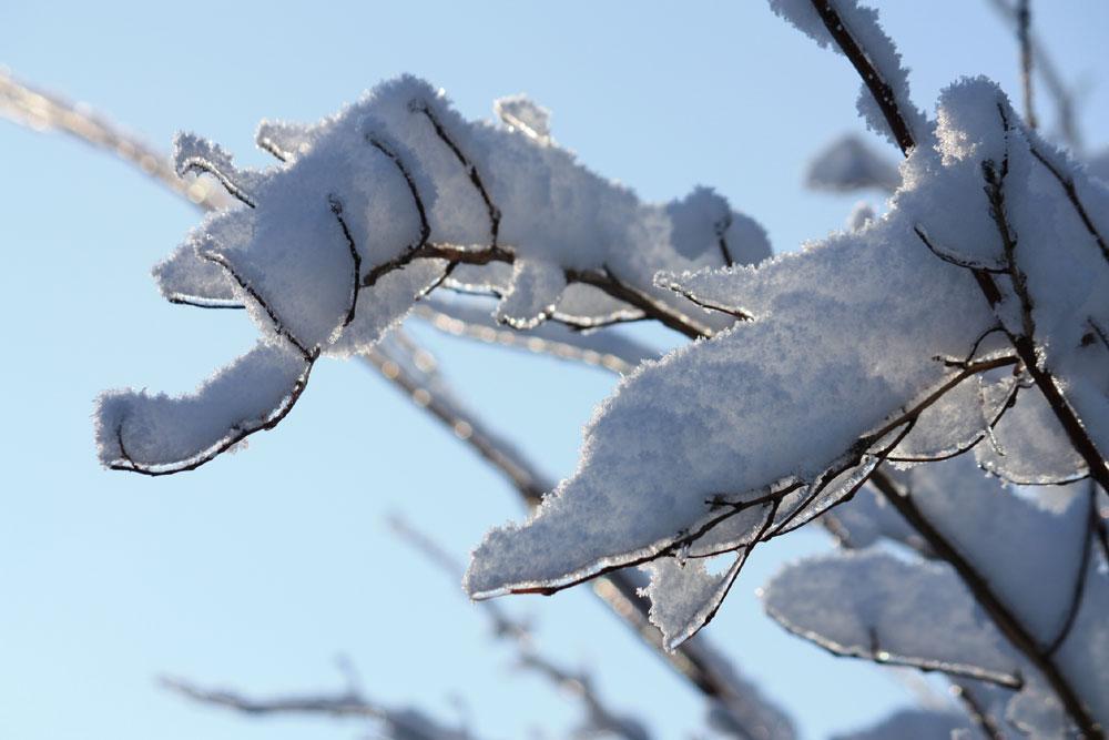 Zur Erinnerung - es ist offiziell noch Winter