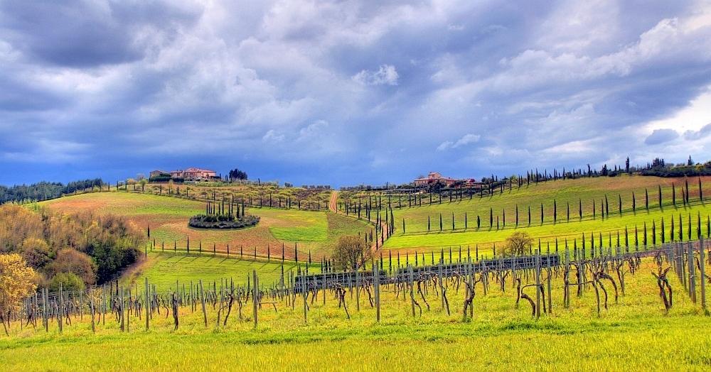 Zurück aus der Toscana
