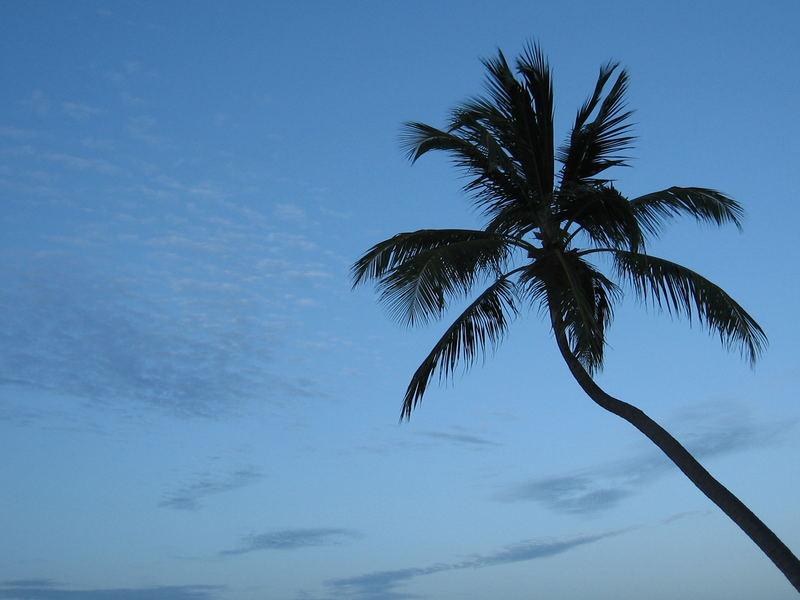 Zurück aus Punta Cana