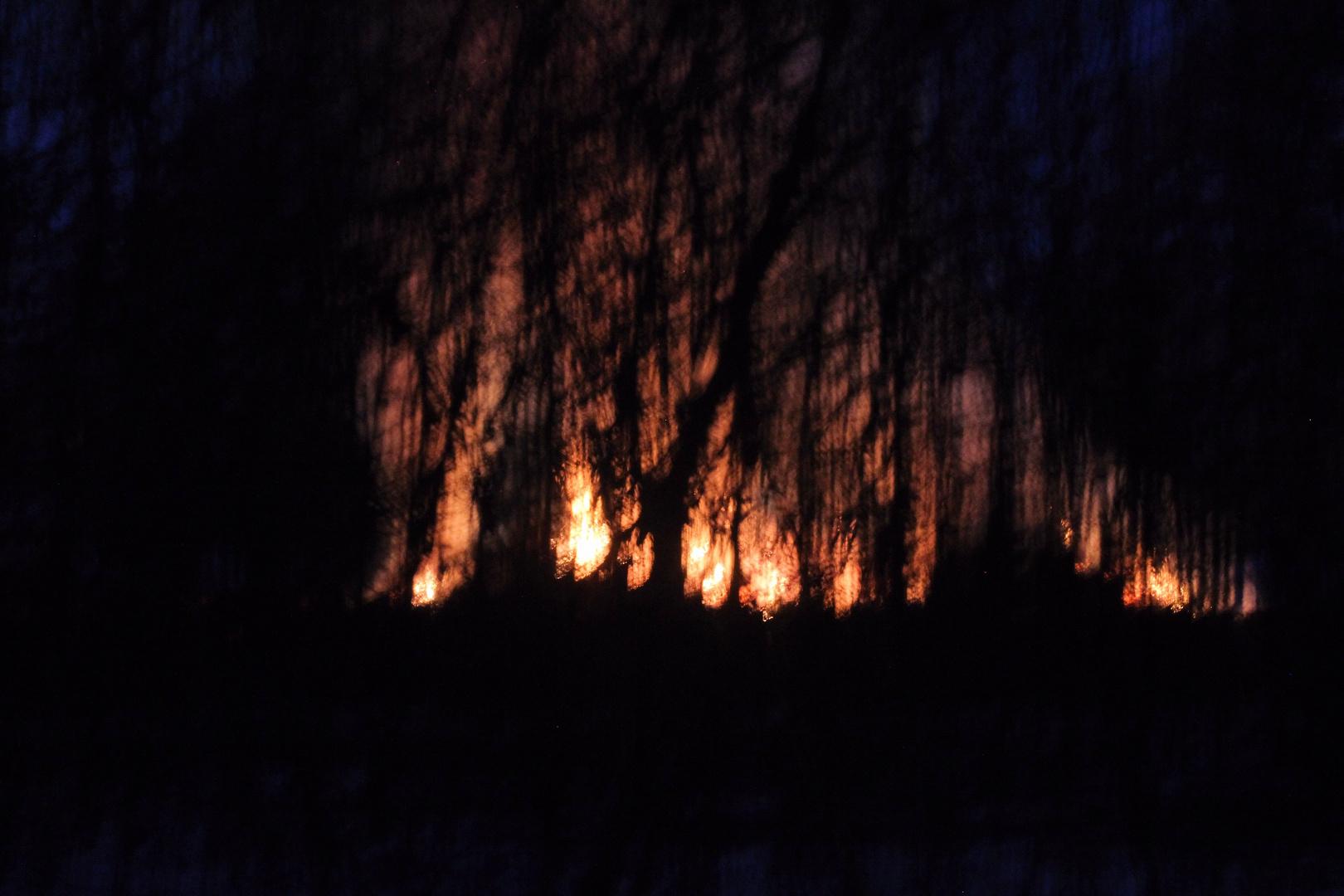 zurückgeschaut zum Osterfeuer