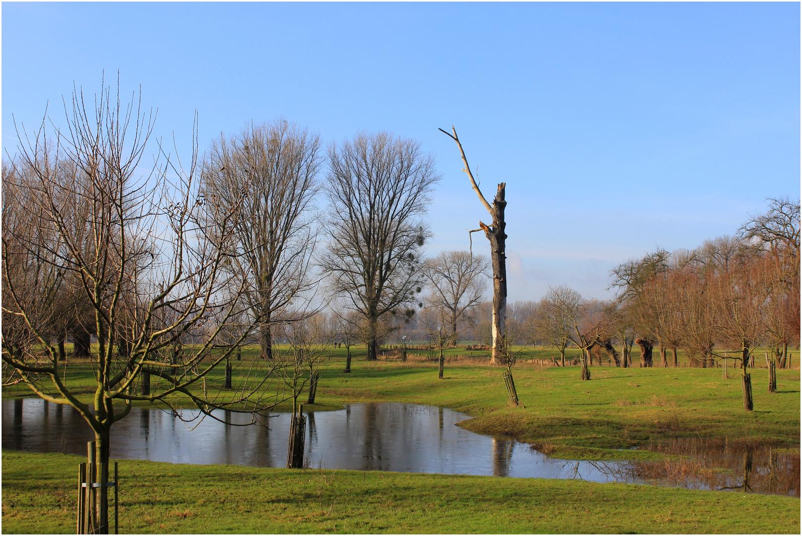 Zurückweichendes Hochwasser 3..