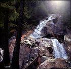 Zwei Bäume am Wasserfall