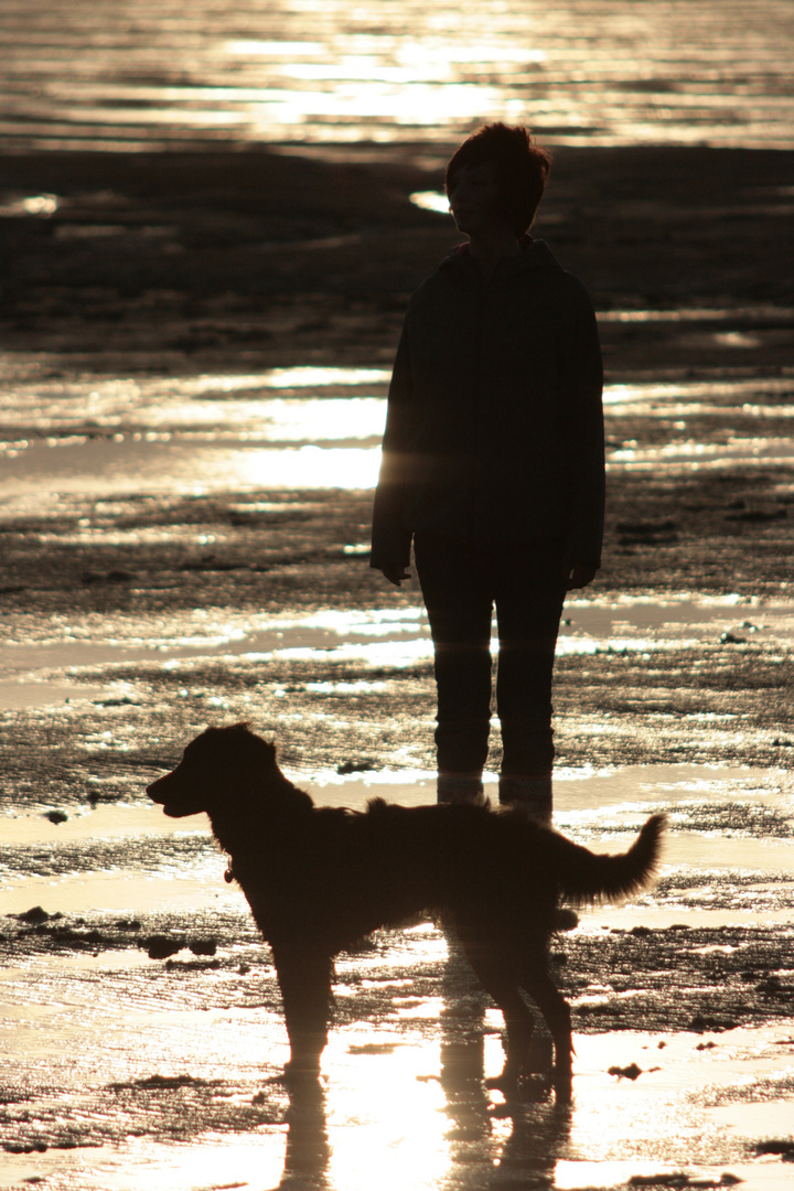 zwei Freunde im Wattenmeer