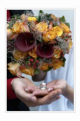 Zwei Hände, zwei Ringe, ein Versprechen gegeben