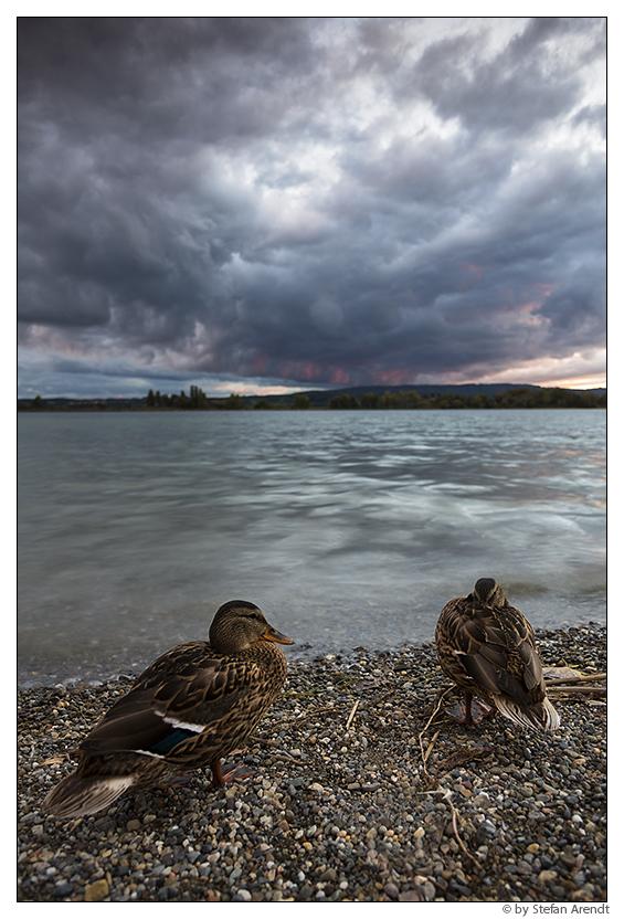 Zwei im Sturm