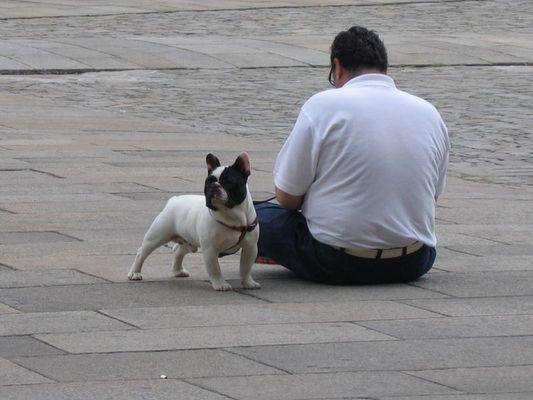 zwei mit gleichem Format auf dem Platz vor der Kathedrale in Santiago de Compostela