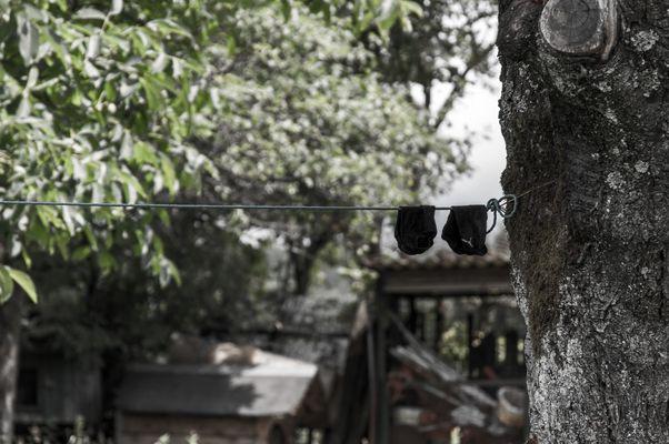 Zwei Pumas auf der Leine halten sich für Faultiere