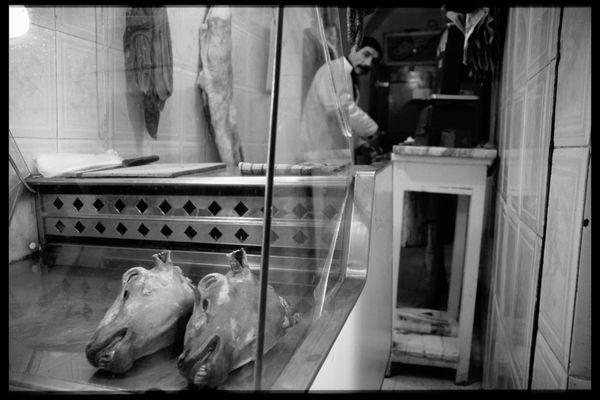 ... zwei Schafköpfe - bitte..., Tunesien, Sousse 1999