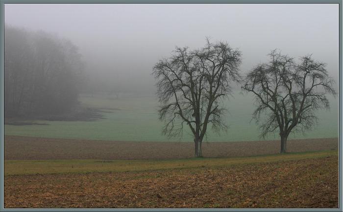 zwei Schwestern im Nebel