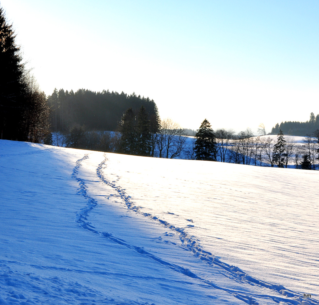 Zwei Spuren im Schnee...