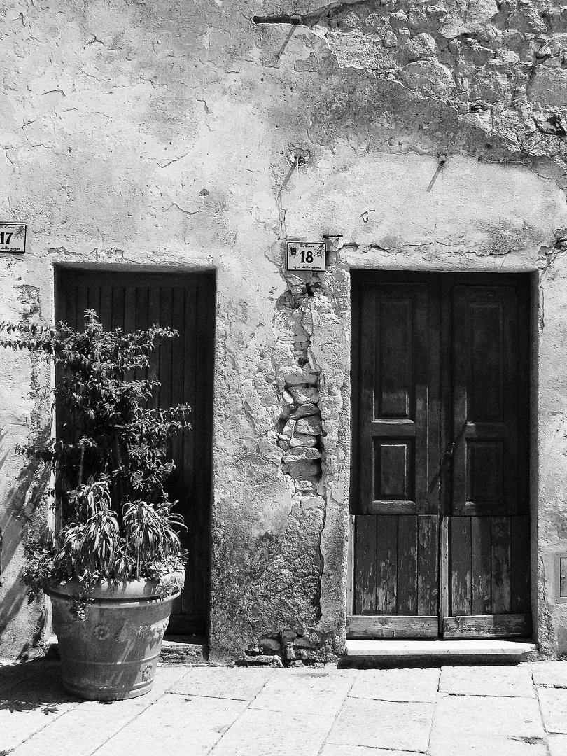 Zwei Türen in einer verwitterter Wand, Pflanzen