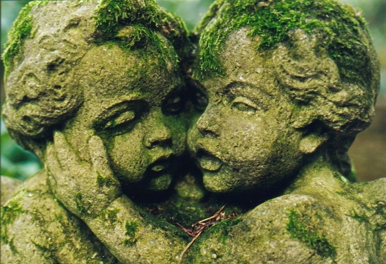 Zwei ungeborene Seelen sitzen im Geisterbaum, sie schmiegen sich aneinander ...
