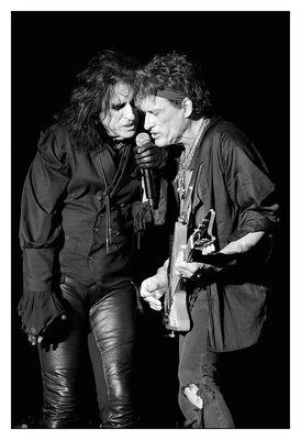 Zwei Vampire