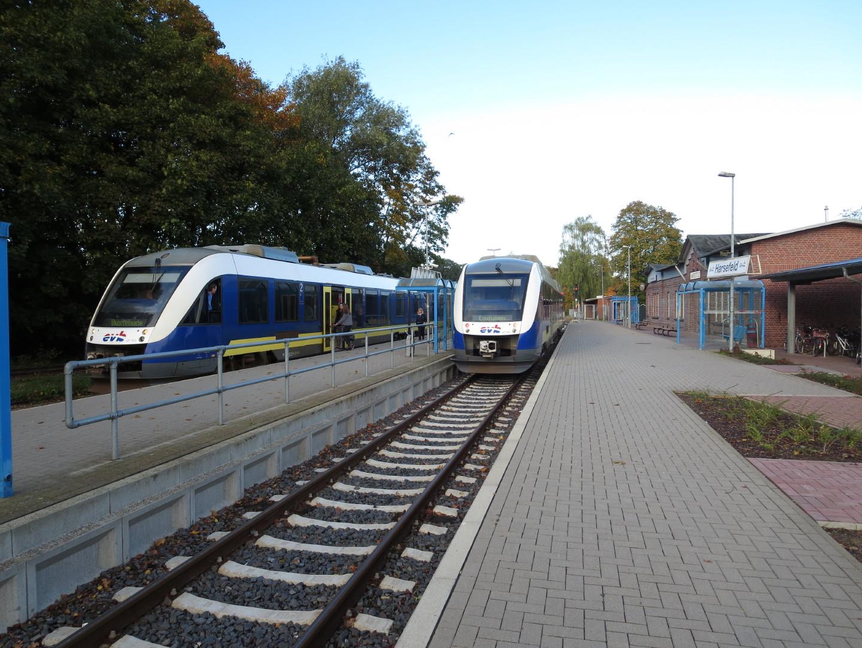 Zwei Züge der evb im Bahnhof Harsefeld