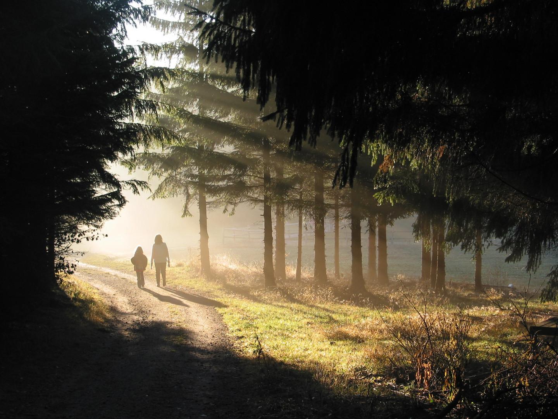 Zweisamer Morgenspaziergang