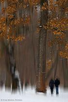 Zweisamkeit im einsamen Wald
