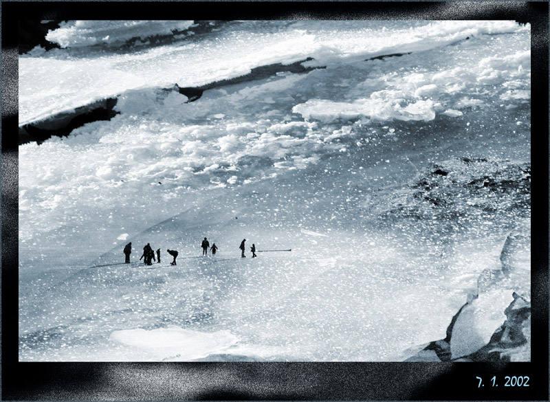 Zweite Aufnahme vom Zwergenvolk,heute um 15h fotografiert.