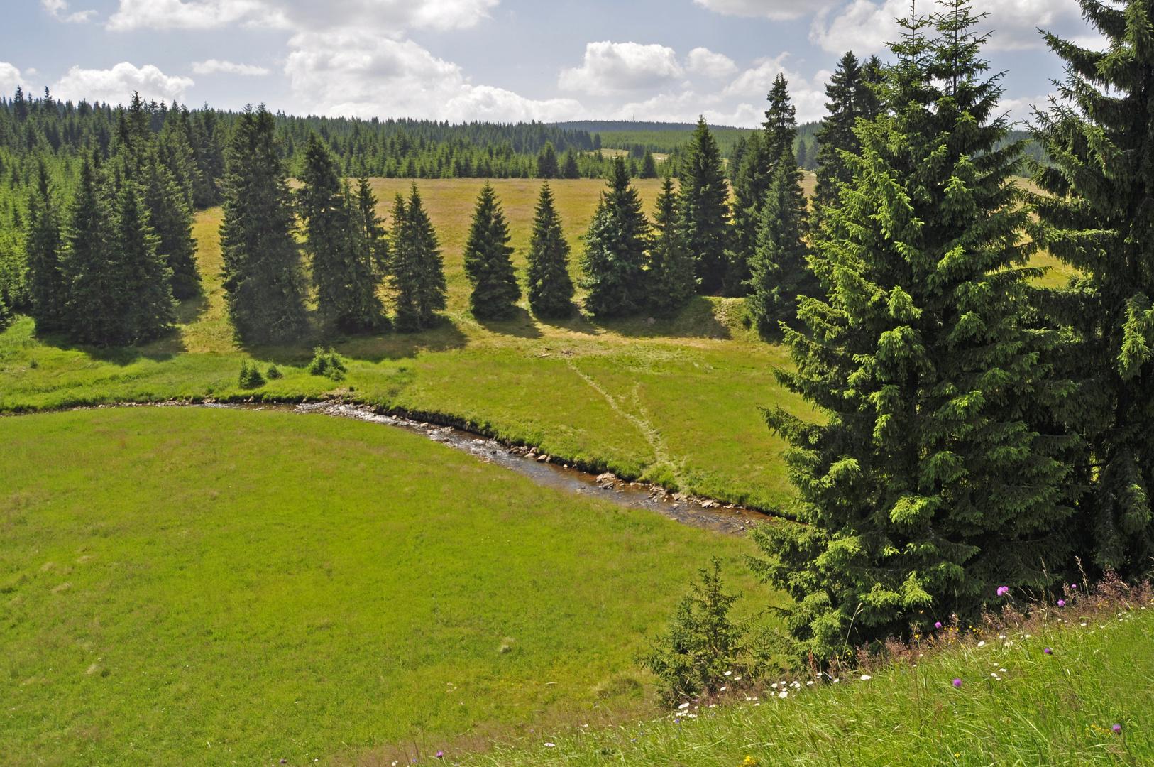 Zwischen Bozi Dar (Gottesgab) und Horní Blatná (Platten) CZ (8)