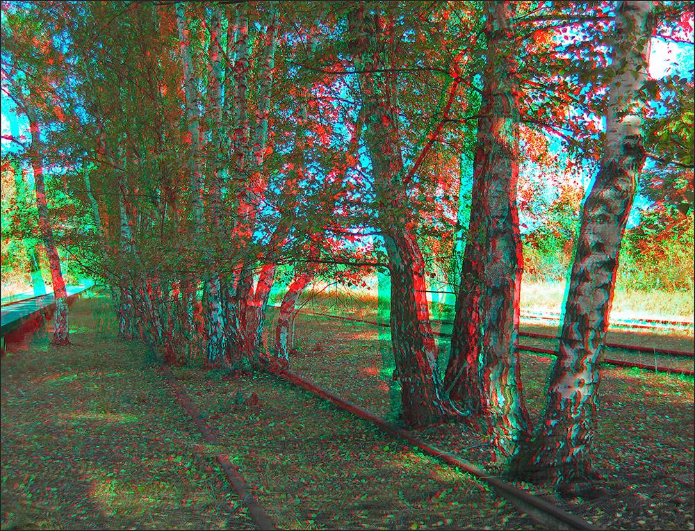zwischen den Schienen (3D)