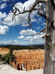 Zwischen Himmel und Hölle? Bryce Canyon National Park