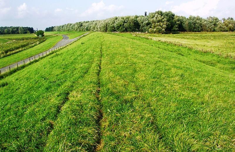 Zwischen Hunte und Weser