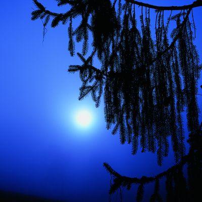Zwischen Tag & Nacht