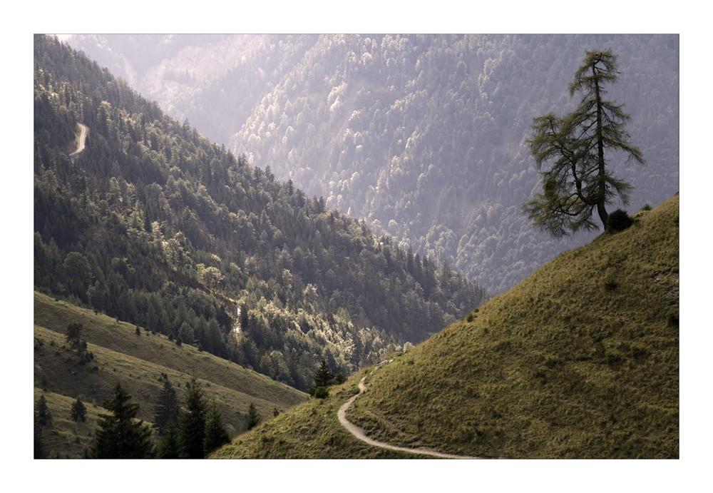 Zwischen Trainsjoch und Trockenbachalm