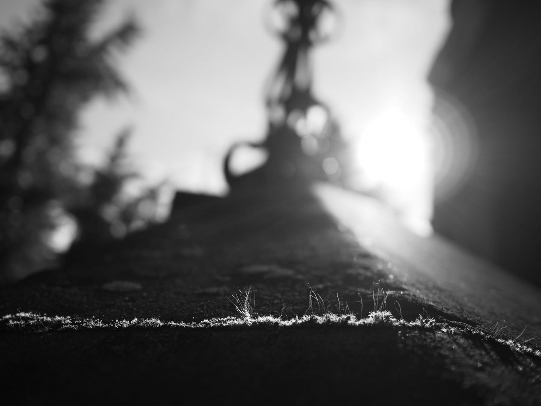 ZwischenRäume