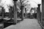 Zwischenzeiten im Rosensteinpark