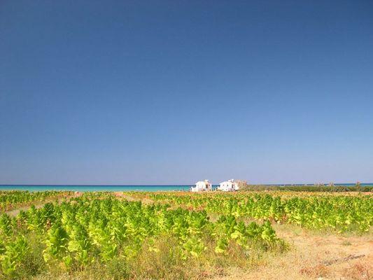 Zypern - Haus am Meer