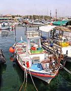 Zypern Paphos -Hafen 7