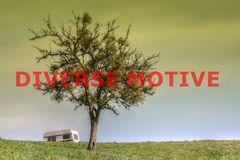 Diverse Motive (P)